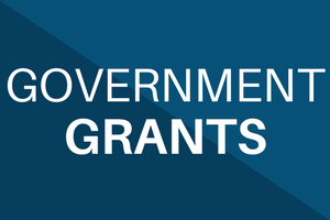 Government Grants (SBIR/STTR)